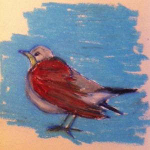 fågelteckning